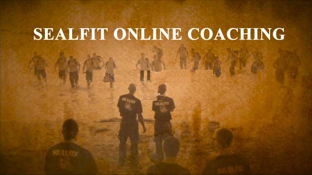 SEALFIT Online Coaching